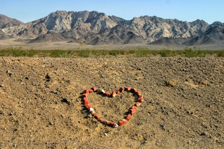 The Mojave Desert - 1999